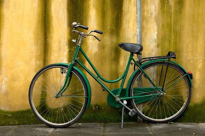 green-moss-9x13