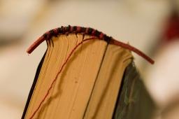 sewing-capitello