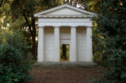 columns-in-the-forest_69
