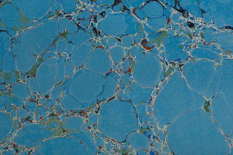 vein-on-blue