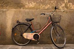 Biciclette Fiorentine